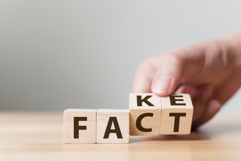 Wooden Blocks Showing The Word Fact